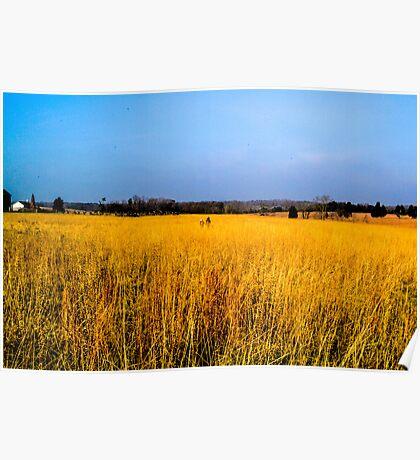 Ghosts in the Grass, Manassas Battlefield Poster