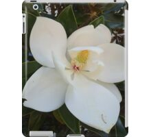 Louisiana Magnolia iPad Case/Skin