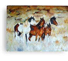 High Desert Wild Ones Canvas Print