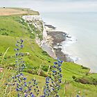 White Cliffs of Dover by Stephen Knowles