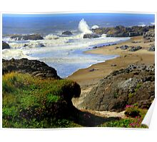 Smelt Sands...Yachats, Oregon...Pacific Ocean Poster