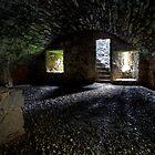 The Cellar by Roddy Atkinson