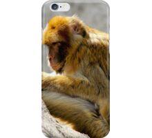 Barbary Ape iPhone Case/Skin