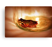little tree frog in a mason jar Canvas Print