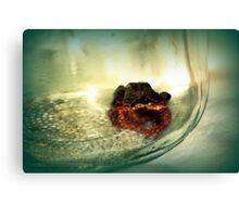 little tree frog in a mason jar 2 Canvas Print