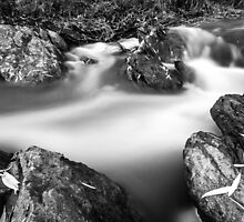 Tranquil stream 01 by Justinlrg78