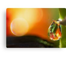 Humble in the Presence Canvas Print