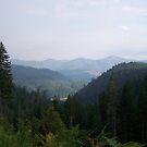 Oregon mountain range by michael griffith