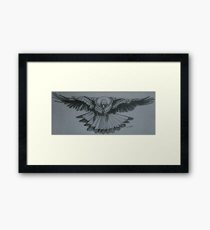 Magpie - Pencil Sketch Framed Print
