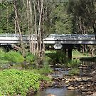 Bridge In The Bush by aussiebushstick