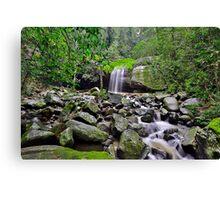 Falls and Rocks Canvas Print