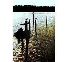 steppin posts Photographic Print