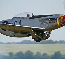 """P-51D Mustang """"Nooky Booky IV"""" - Duxford Flying Legends 2013 by Colin  Williams Photography"""