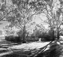 Royal Park 04 by Pierre