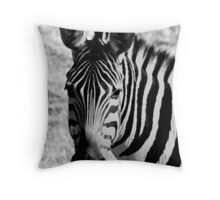 Plains Zebra black & white 1 Throw Pillow