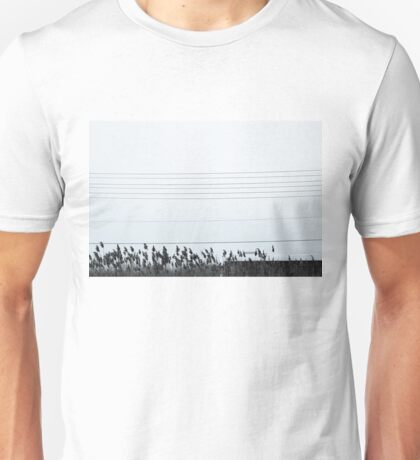 Electrical Wires, Reeds and Bus Unisex T-Shirt