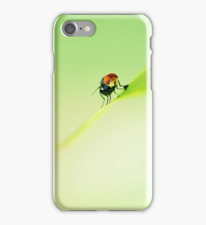 Macro Fly iPhone Case/Skin