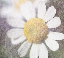 Daisy IPAD Case by Circe Lucas