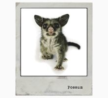Possum Polaroid Kids Clothes