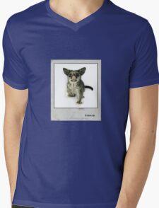 Possum Polaroid Mens V-Neck T-Shirt