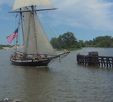 Lynx - Bay City (Michigan) Tall Ships - 2013 by Francis LaLonde