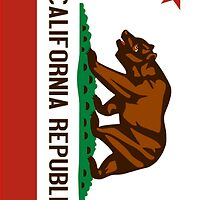 California State Flag by CostaRicaLads