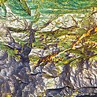Colorful Rock Pattern by John Butler