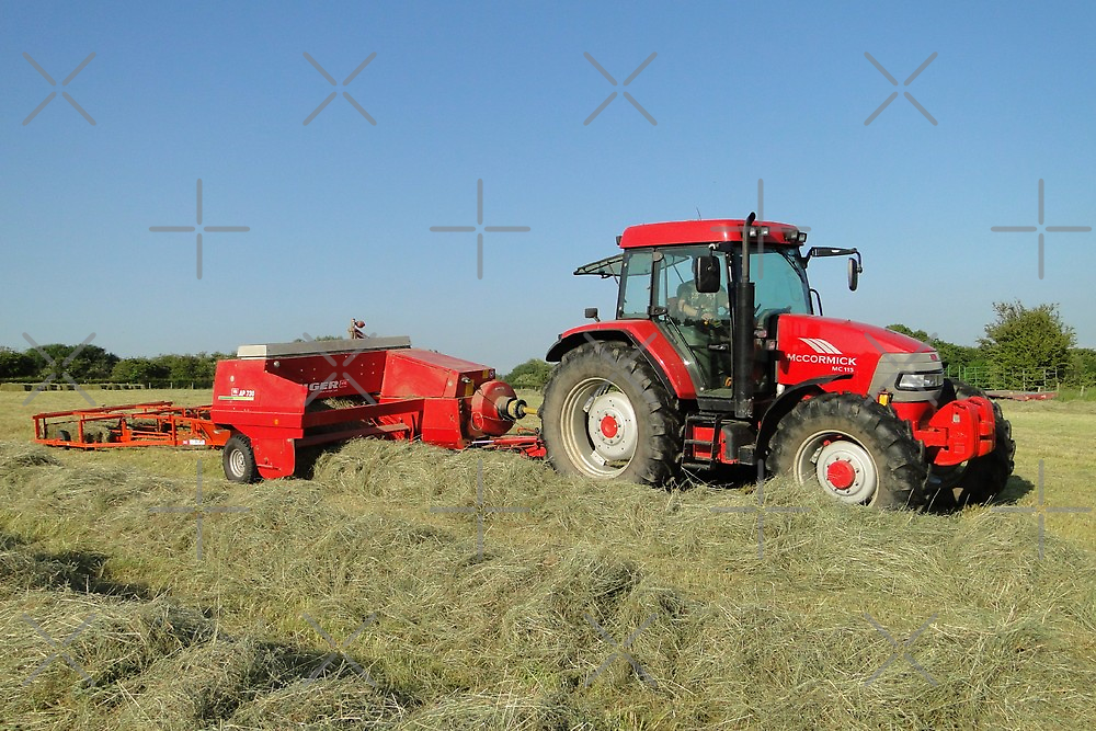A Time To Make Hay by Barrie Woodward