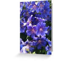 Blue flowers in the garden Greeting Card