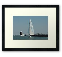 Slinking through Water Framed Print