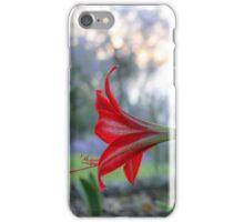 Red in bloom iPhone Case/Skin