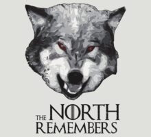 The North Remembers ( Game of thrones ) 3 by lab80
