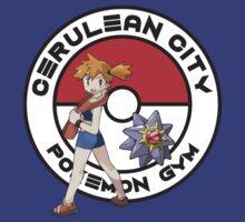 Cerulean City Pokemon Gym by Zanzabar7