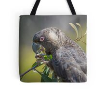 Carnaby's cockatoo feeding on hakea Tote Bag