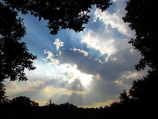 Summer sunburst by Alberto  DeJesus