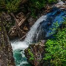 Falls Off Of I-90 Snoqualmie Pass - Washington U.S.A. by Vincent Frank