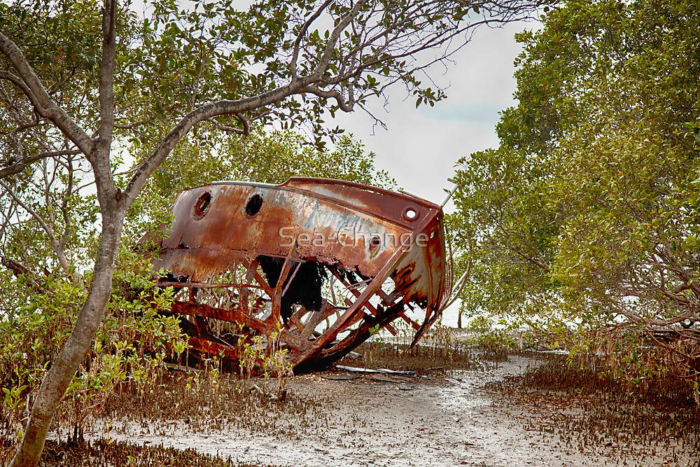 Wrecked in the Mangroves by Sea-Change
