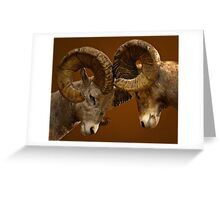 Rams Butting Heads Greeting Card