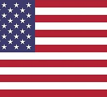 US Flag by CostaRicaLads