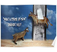 Stuck up Cow Poster