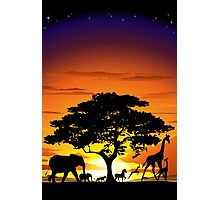 Wild Animals on African Savannah Sunset  Photographic Print