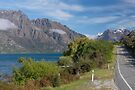 On the Road to Queenstown by Barbara Burkhardt