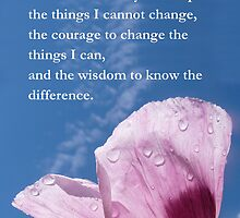 The Serenity Prayer Affirmation Card  by Katherine T Owen, Author