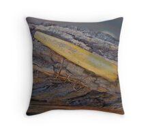 Vintage Atom Wooden Fishing Lure - Saltwater Throw Pillow