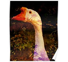 Garden Goose Poster
