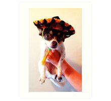 Sombrero Art Print
