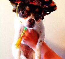 Sombrero by rondo620