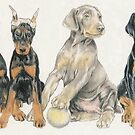 Doberman Puppies by BarbBarcikKeith