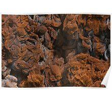 Rusty Metal Net Texture Poster