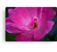 Shades of Pink Canvas Print